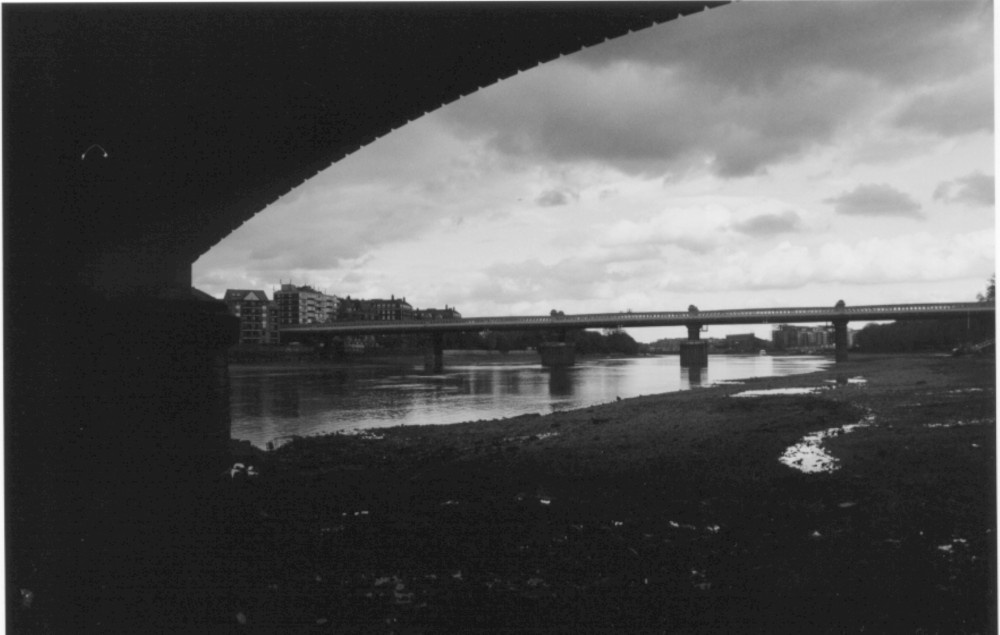 photograph of the river Thames taken from below the Putney bridge, London