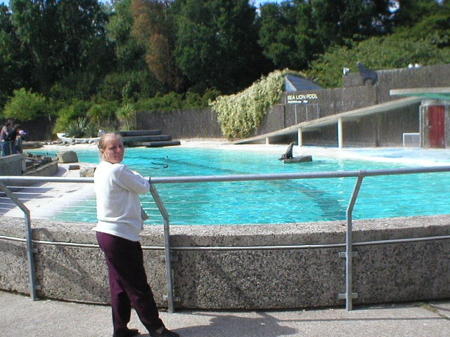 The Sealion Pool, Blackpool Zoo, taken August 2005