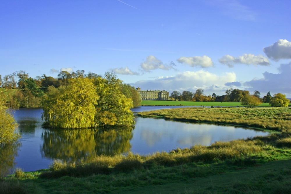 Petworth Park with Petworth House in the background, West Sussex.