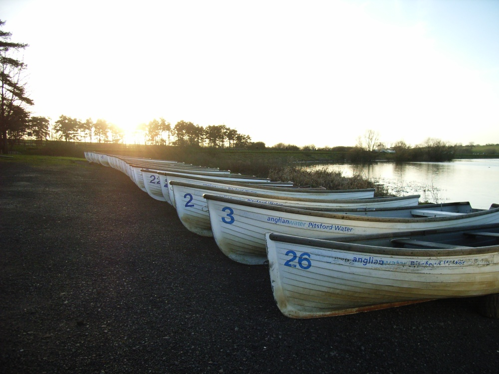 Pitsford Water, Northants