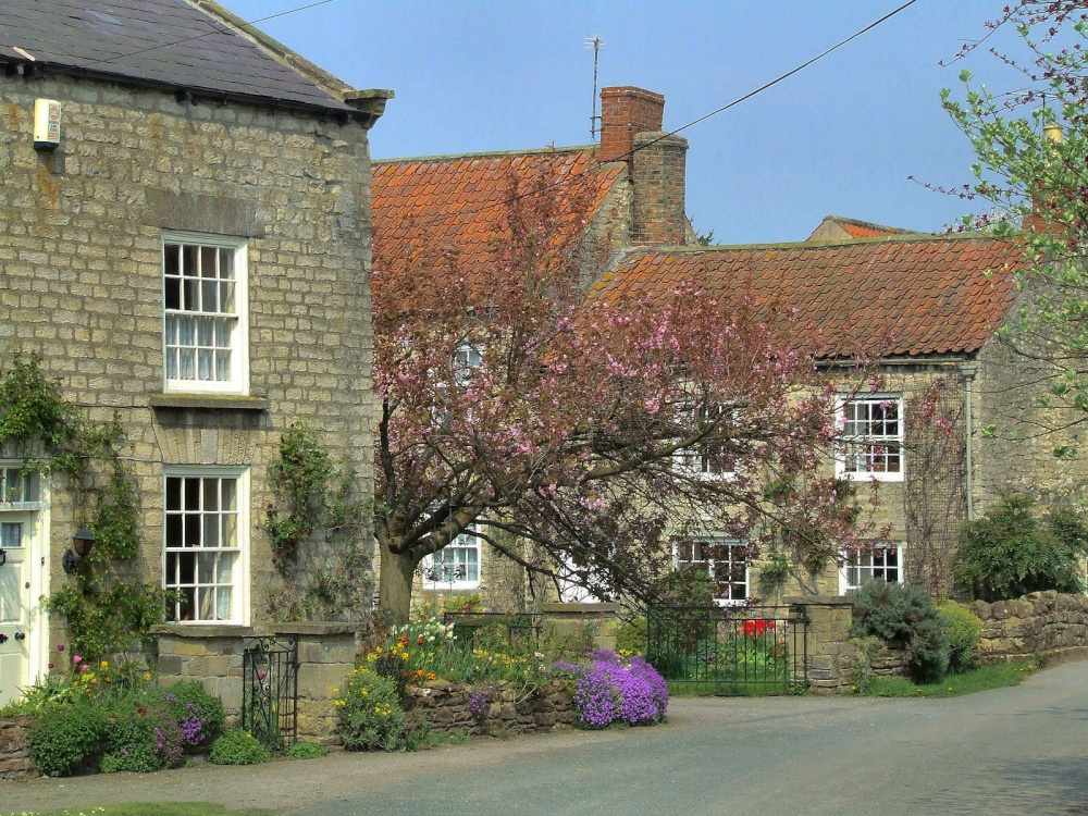 In the village, Hovingham, North Yorkshire