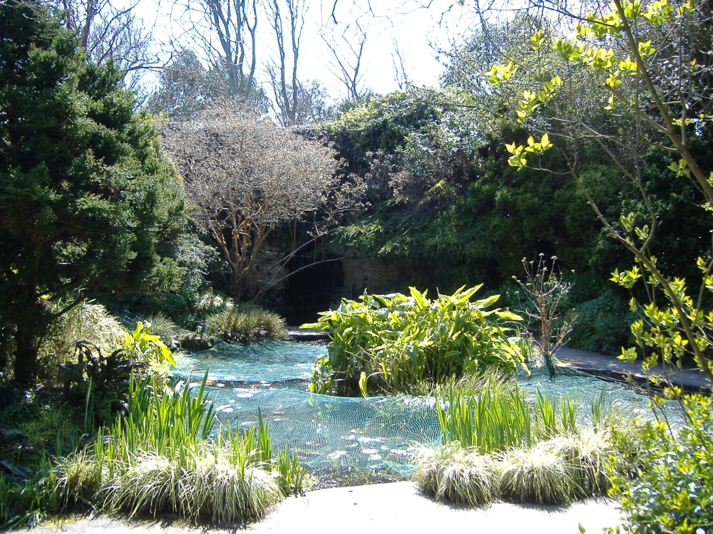 Quot Highdown Gardens Ponds Quot By Stephen Luff At