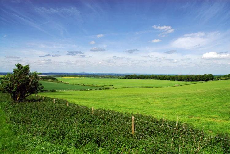 """Wantage, Oxfordshire Landscape"" by Paul Hilton at ..."