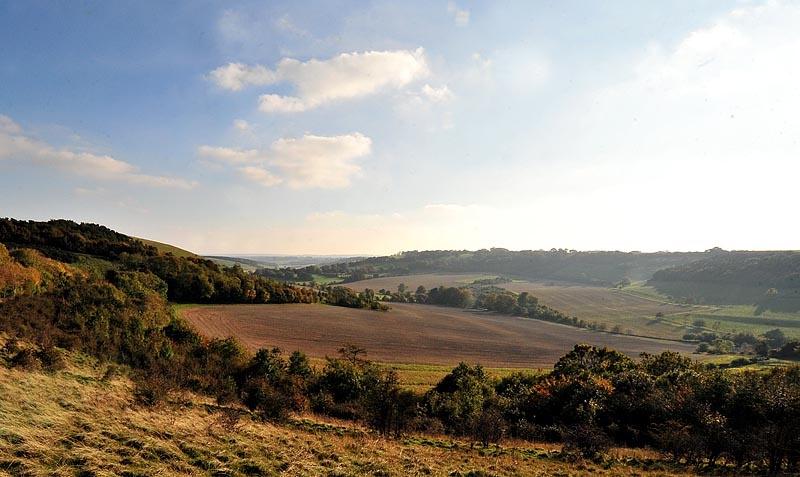 Walbury Hill, near Inkpen, Berkshire