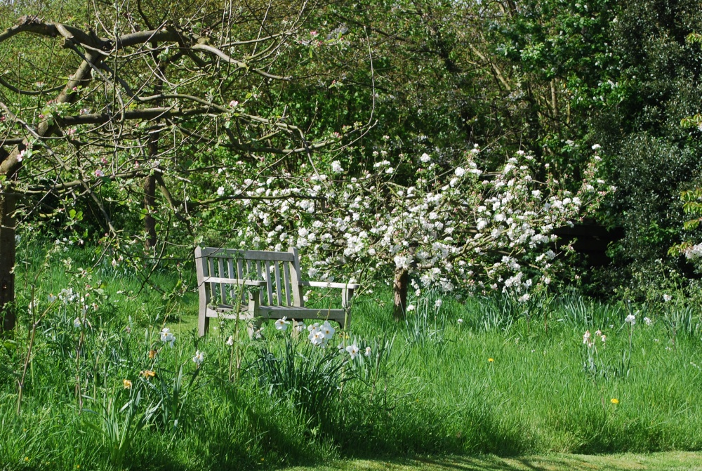 The garden in spring by roger smith at for Stone acre