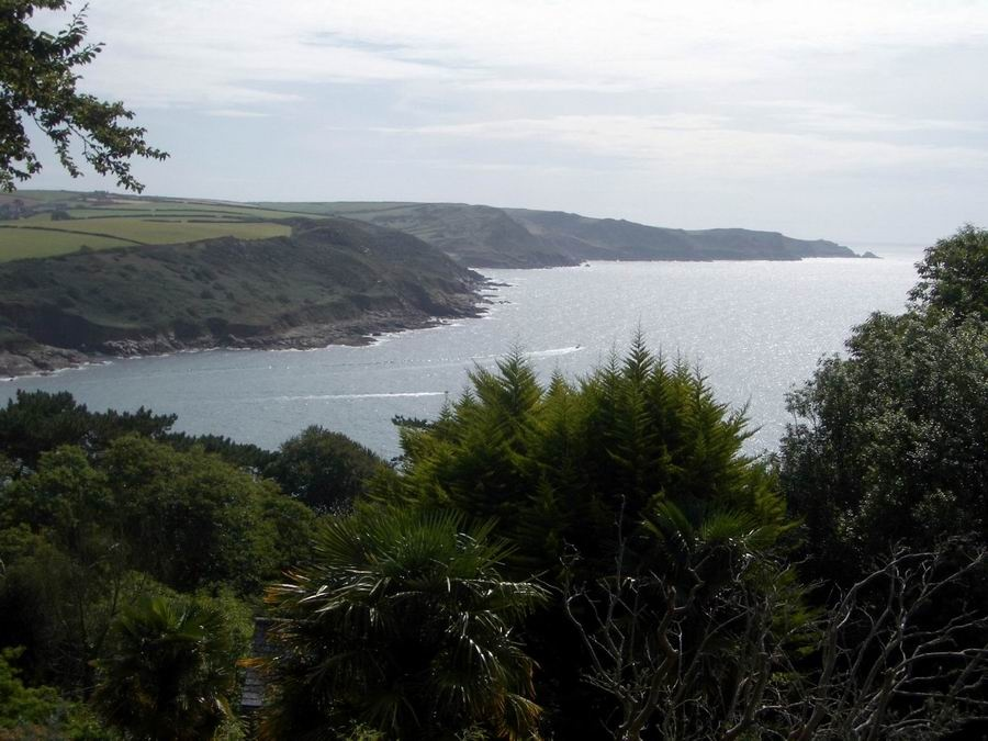 View from Overbecks Garden Salcombe