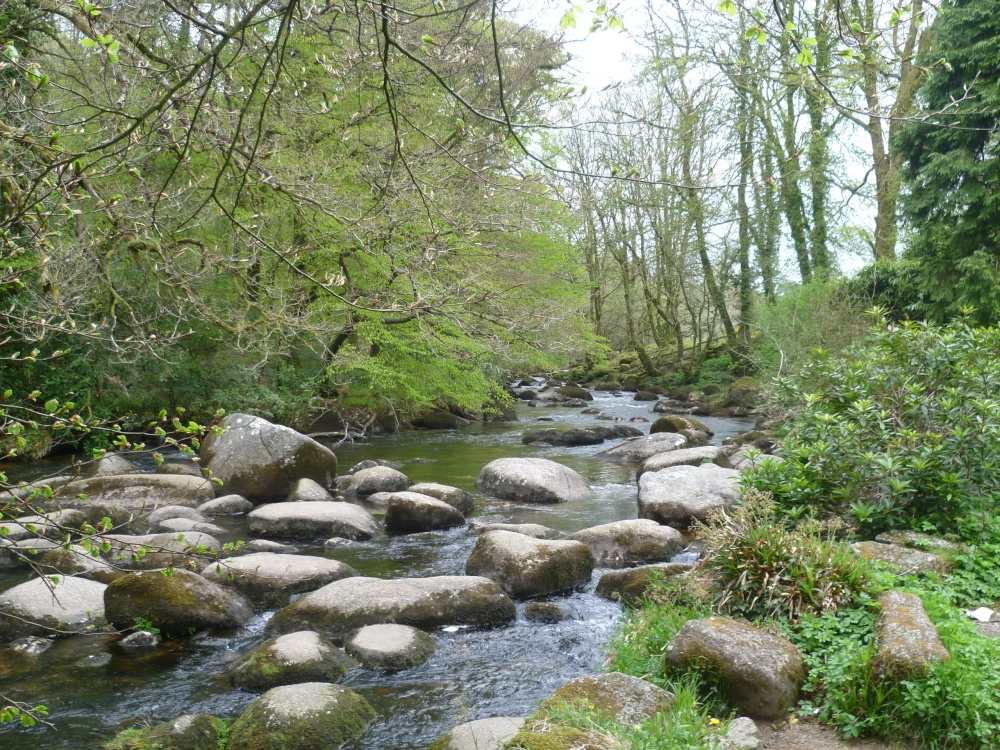 Quot Dartmoor National Park Quot By Marjorie Pope At